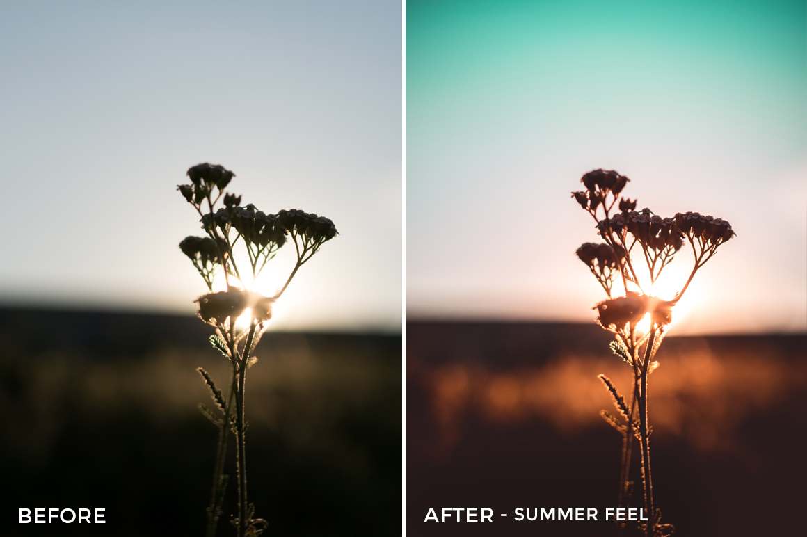 Summer Feel - Viktor Szabo Summer Feels Lightroom Presets - FilterGrade
