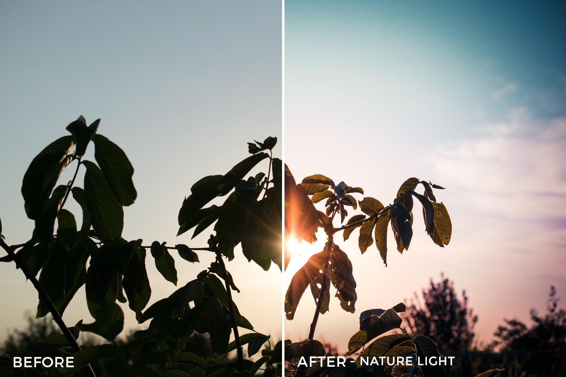 Nature Light - Viktor Szabo Summer Feels Lightroom Presets - FilterGrade