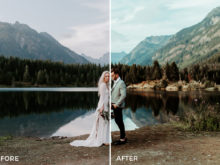 8 Nick Asphodel Moody Wedding Lightroom Presets - FilterGrade