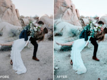 5 Nick Asphodel Moody Wedding Lightroom Presets - FilterGrade