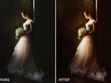 3 Nick Asphodel Moody Wedding Lightroom Presets - FilterGrade