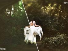 2 Nick Asphodel Moody Wedding Lightroom Presets - FilterGrade