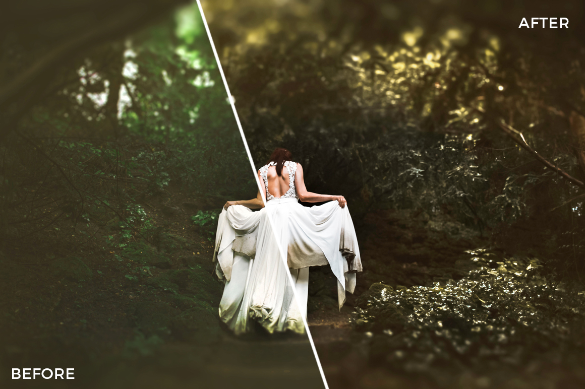 2 Nick Asphodel Moody Wedding Lightroom Presets - FilterGrade