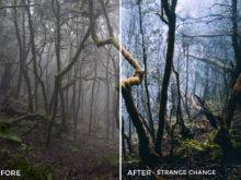 Strange-Change-Dominic-Lars-Lightroom-Presets-FilterGrade