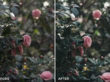 4-Bankpyt-Mobile-Lightroom-Presets-FilterGrade