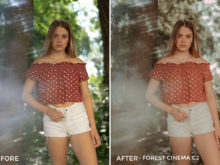 Forest-Cinema-C2-Thomas-Beerten-Forest-Cinema-Lightroom-Presets-FilterGrade