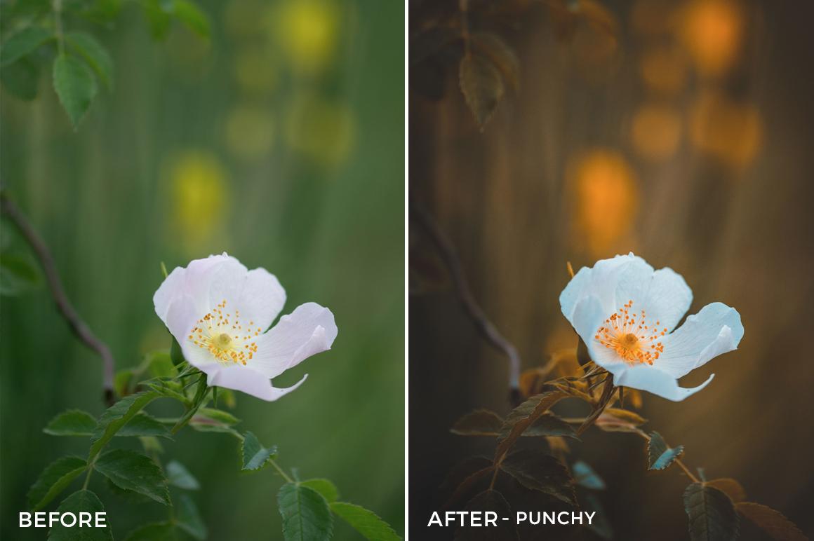 Punchy-Jeferson-Castellari-Lightroom-Presets-FilterGrade