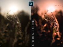 golden touch mobile lr preset