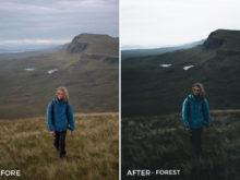 Forest-Michael-Kagerer-Lightroom-Presets-V4-FilterGrade