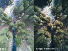 DroneForest-Fabian-Huebner-Lightroom-Presets-FilterGrade
