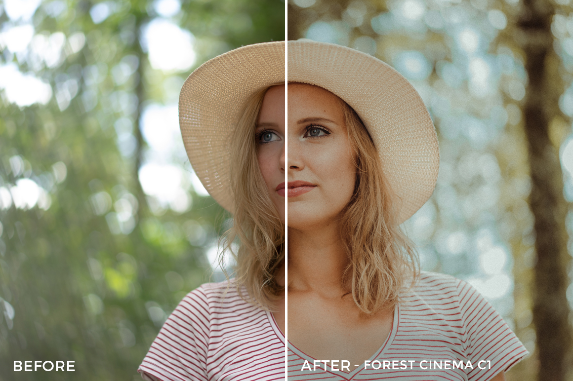 Forest-Cinema-C1-Thomas-Beerten-Forest-Cinema-Lightroom-Presets-FilterGrade