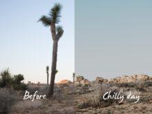 5 Gail Bowman Landscape Lightroom Presets - FilterGrade
