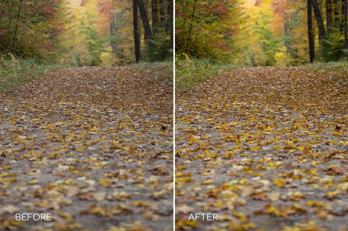 fall and autumn foliage preset