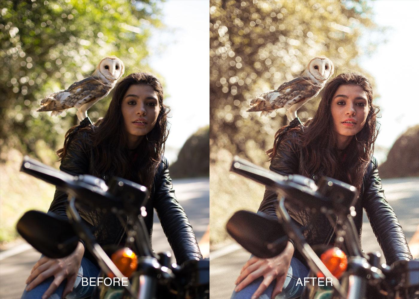 PORTRAIT-1Luis Dalvan Portrait Lightroom Presets FilterGrade