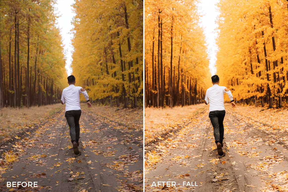 Fall-Nick-Verbelchuck-Lightroom-Presets-II-FilterGrade