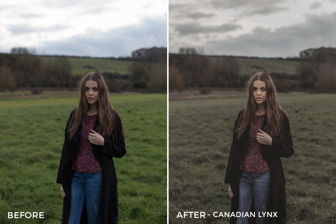 Canadian-Lynx-Ragib-Choudhury-Lightroom-Presets-FilterGrade