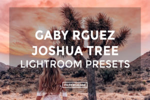 Gaby-Rguez-Joshua-Tree-Lightroom-Presets-FilterGrade