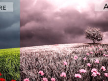 Pink Infrared Effects