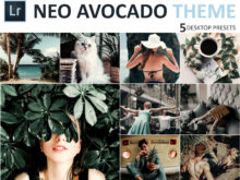 Neo Avocado Theme Desktop Lightroom Presets