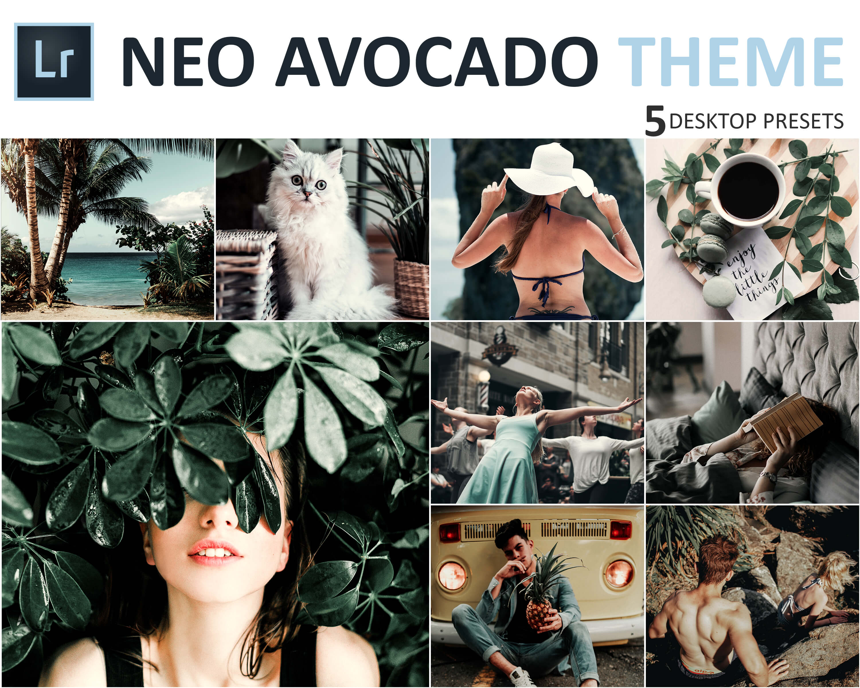 Neo Avocado Theme Desktop Lightroom Presets