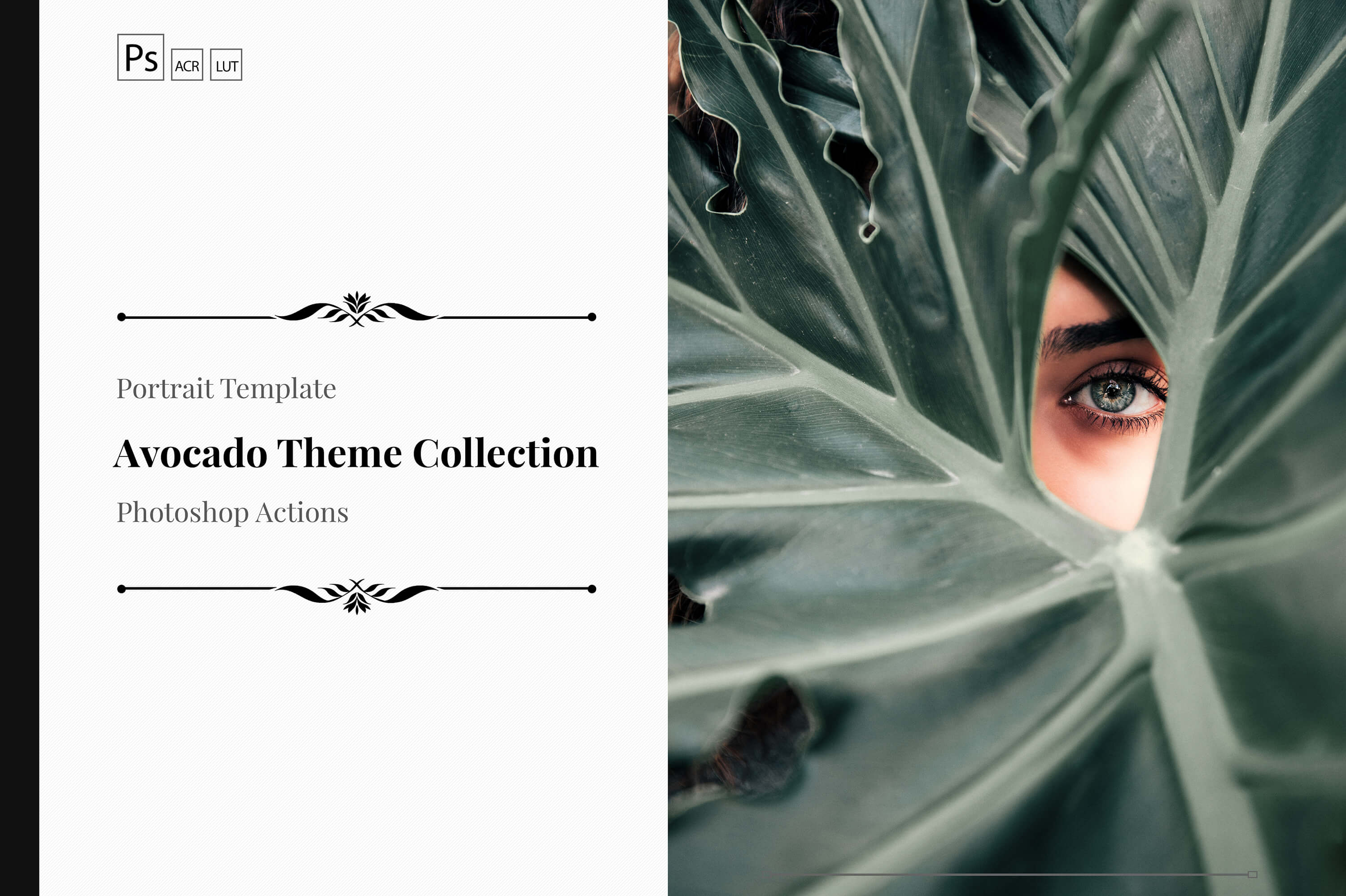 Neo Avocado Theme Collection PS Actions LUTs