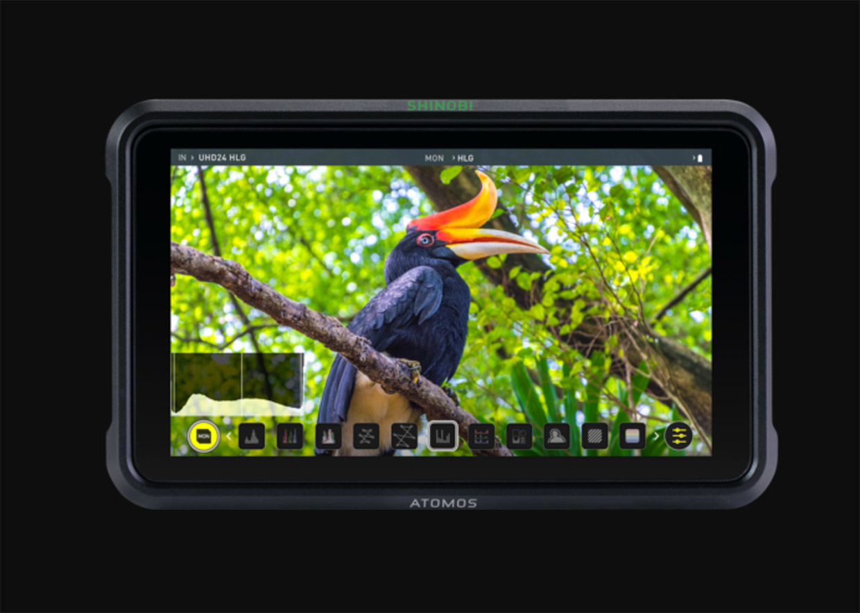 """Preview LUTs in Realtime with Atomos' New Shinobi 5"""" HDR Photo Video"""