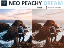 travel presets neo peachy dream