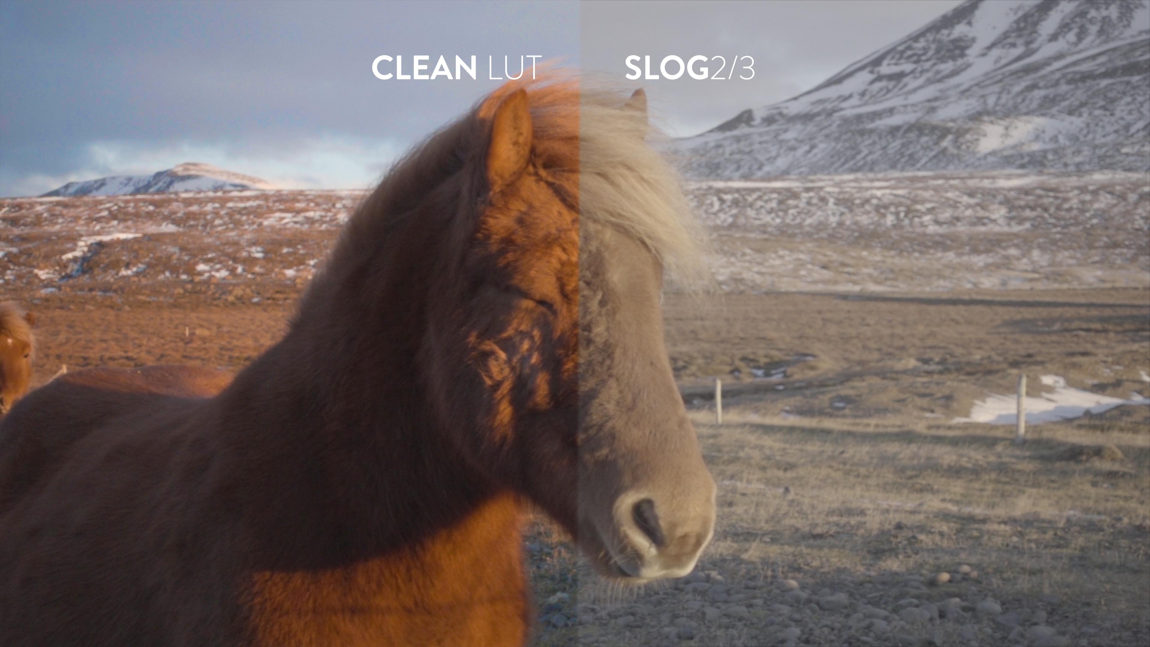 clean lut bounce color