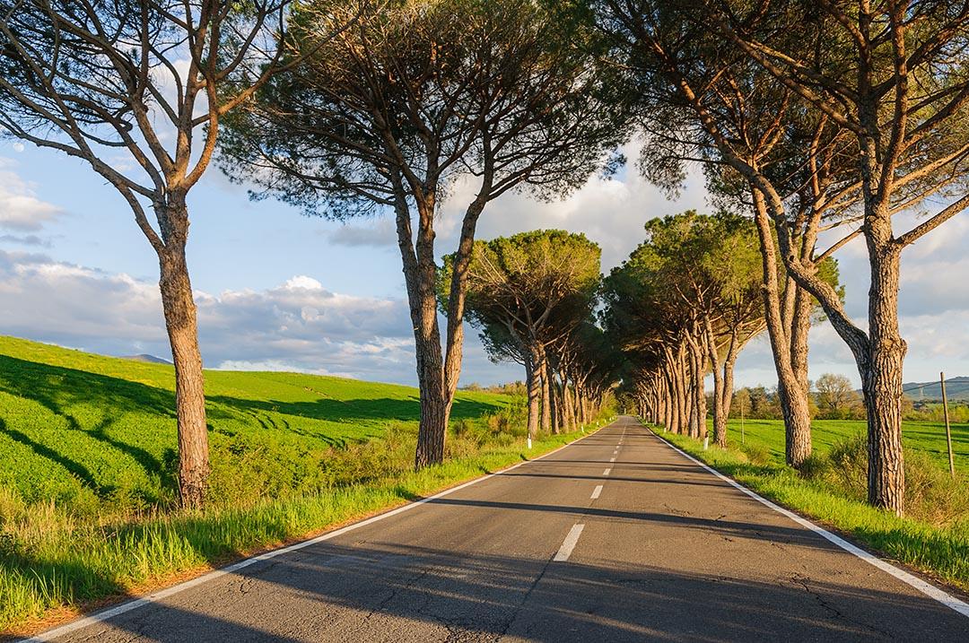 Tuscany, Italy landscape photography