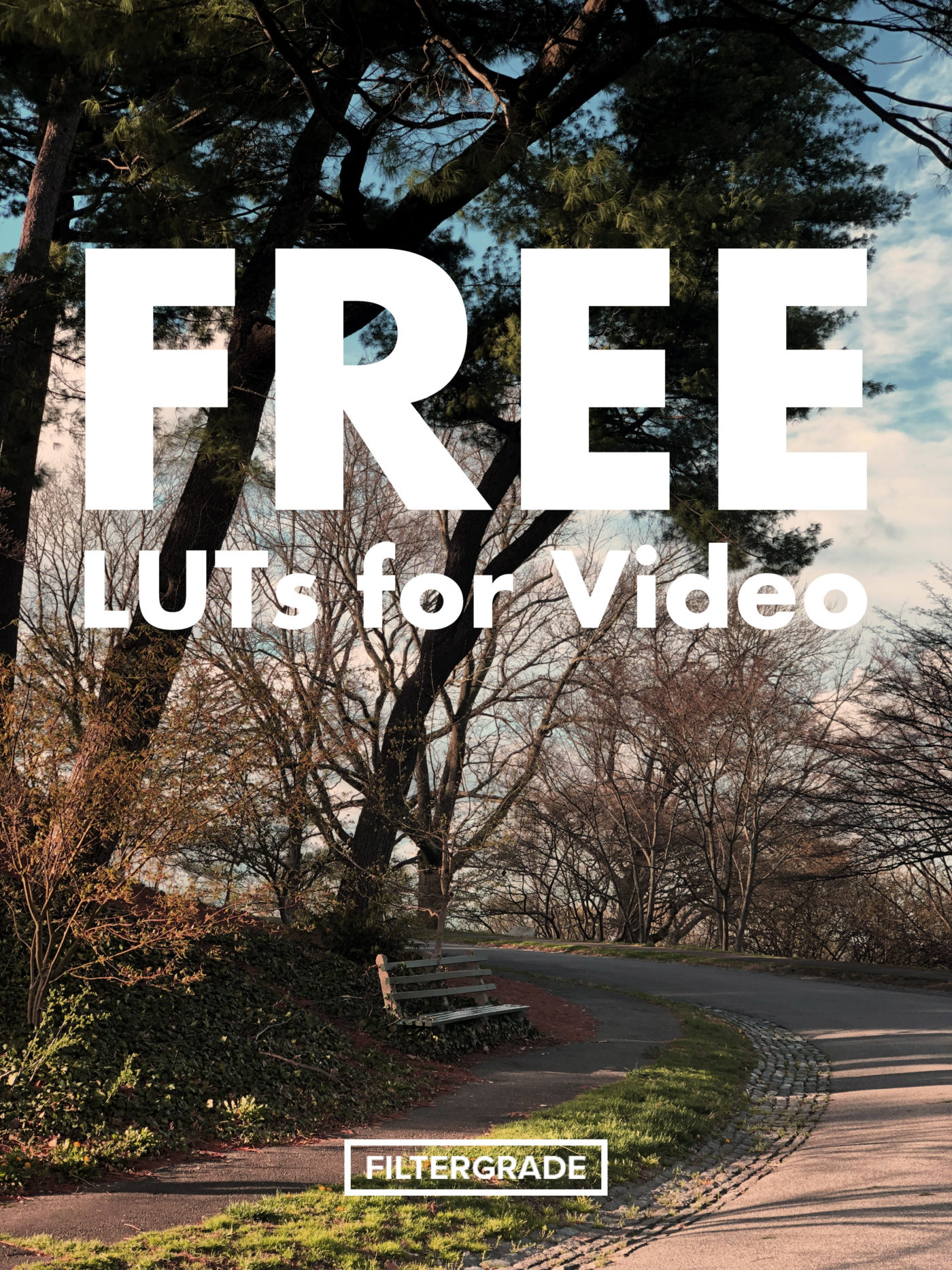 Free Colorful LUTs Pack for Vlogging