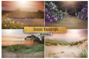 Sunset Backdrops + Backgrounds Bundle
