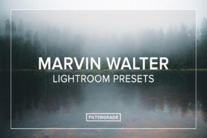 Marvin Walter Lightroom Presets