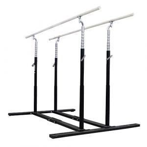 EVO-Black Parallel Bars