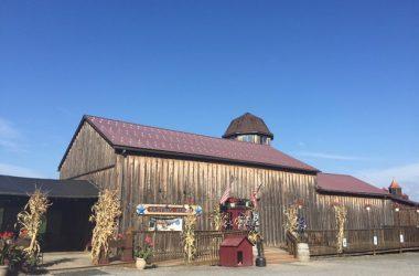 Americana Vineyards Winery Cayuga Wine Trail