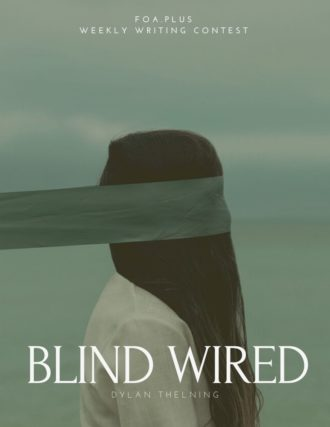 Blind wired