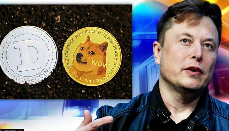 Current Good News Of Dogecoin