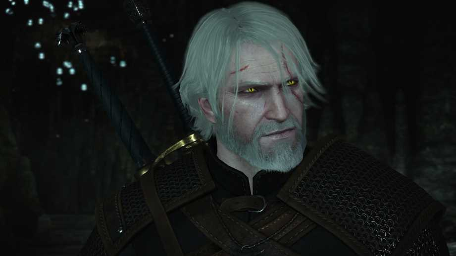 How To Install the Witcher 3 Mods