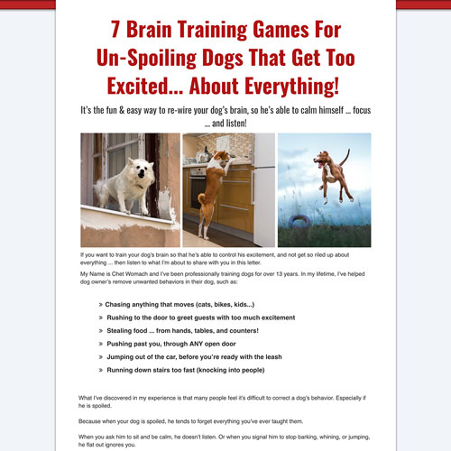 Dog training ebook download sales funnel example