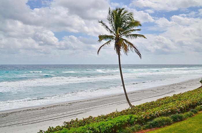 Boca Raton - Brighton - RX-10083559