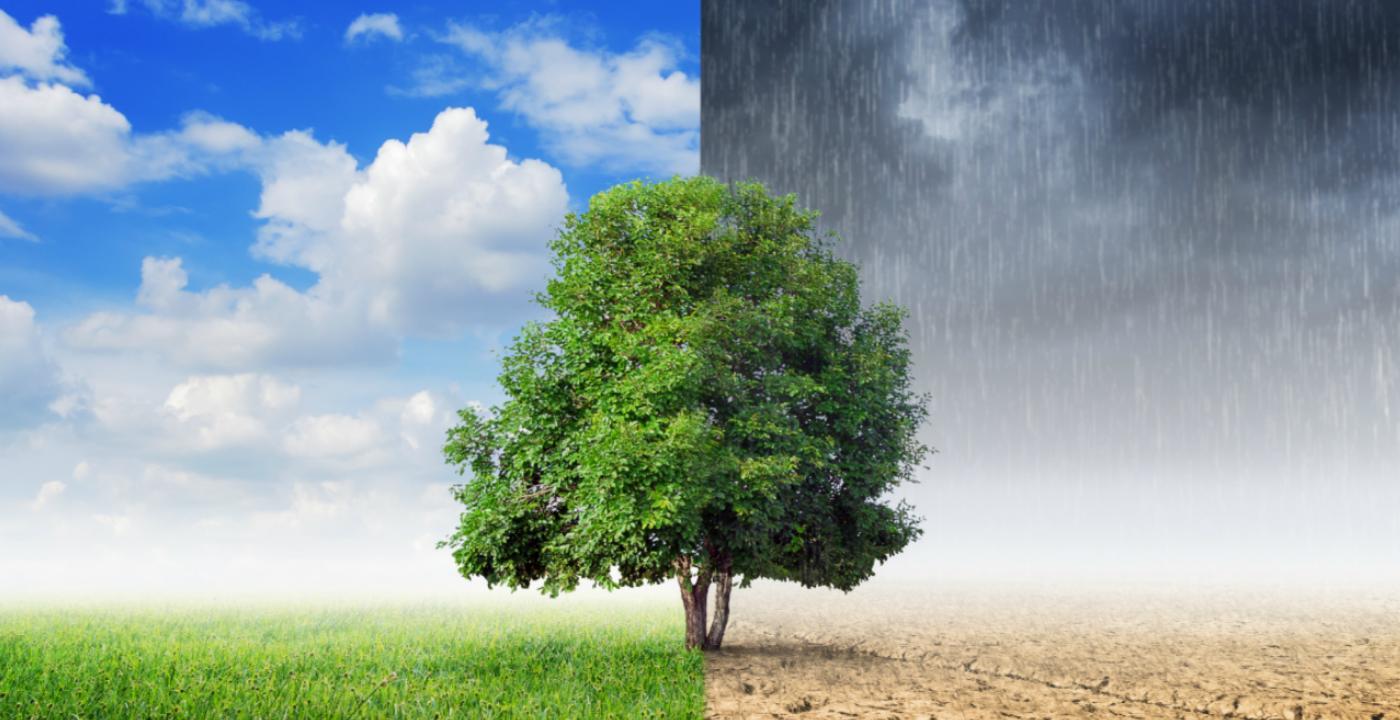 Conozca el pronóstico climático para agosto.