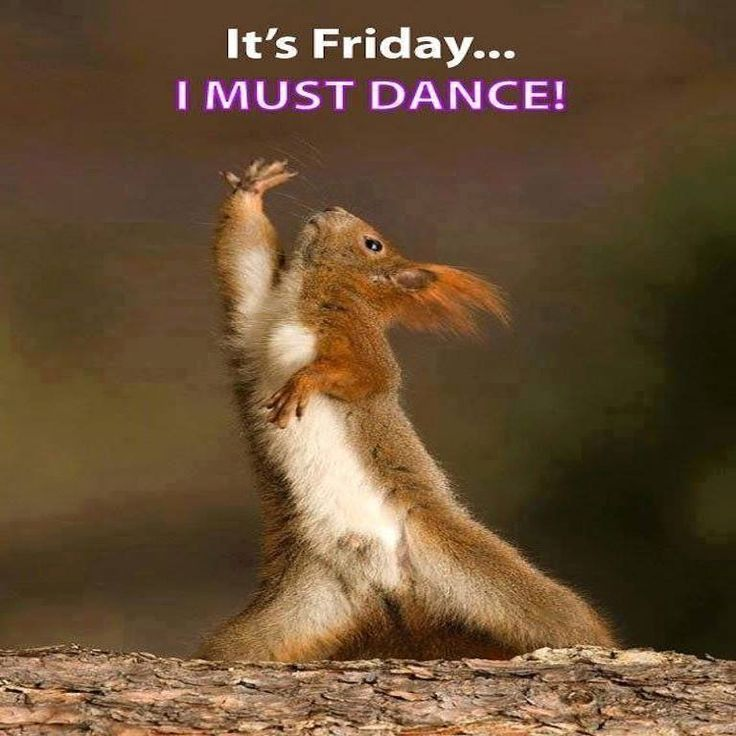 Dec. 14, 2018 – It's Friday …we must all hold hands and dance!