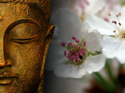 In Zen
