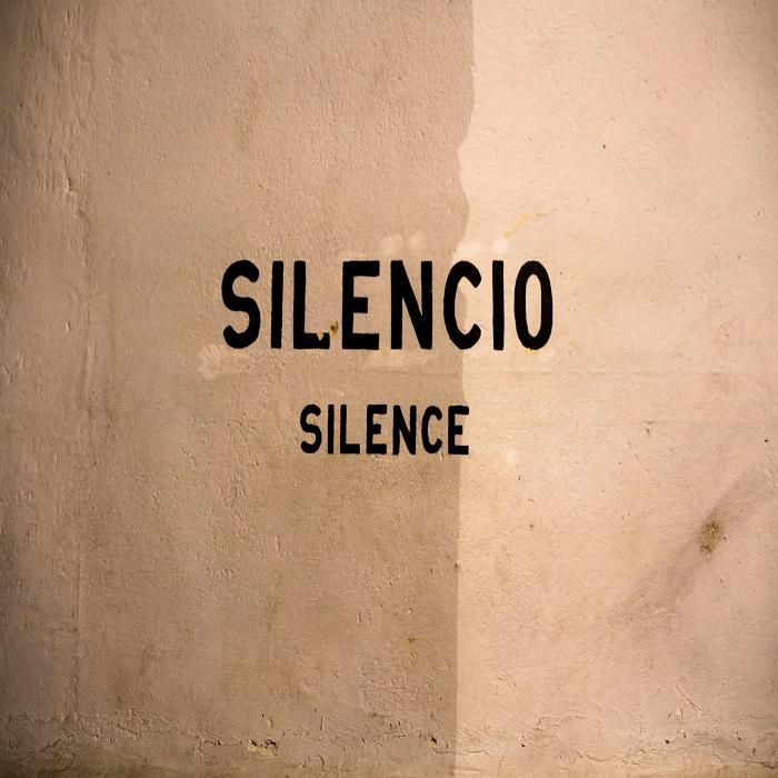 """BEHIND THEIR SILENCE"""