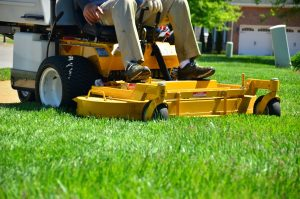 Lawn Care Tip! April 2012