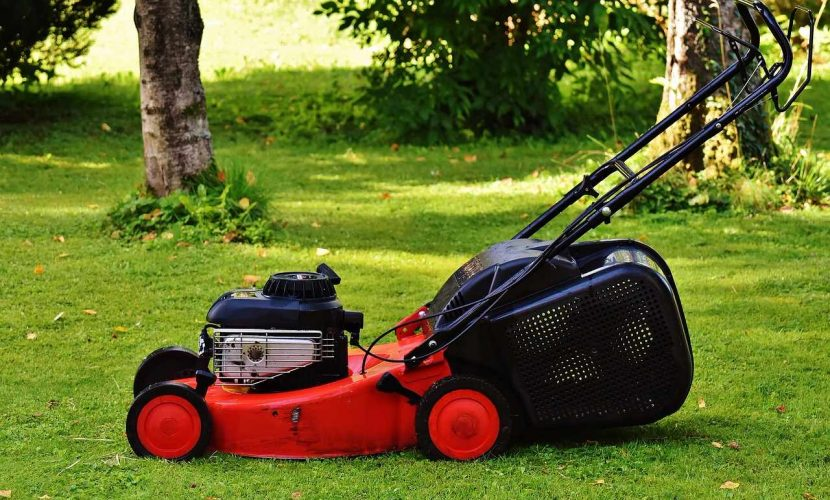 """4 Reasons why it is Vital to Mow your Lawn at a Minimum of 3"""""""
