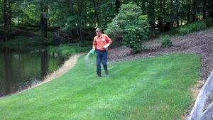 Ways To Deal With A Damaged Lawn Shared By Lawn Care Experts