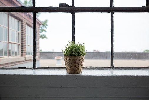 4 Signs you Should Replace your Windows