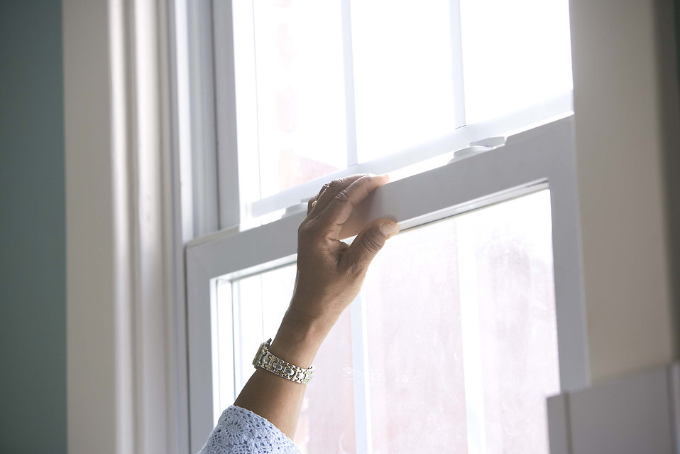 How Can New Windows Save You Money?