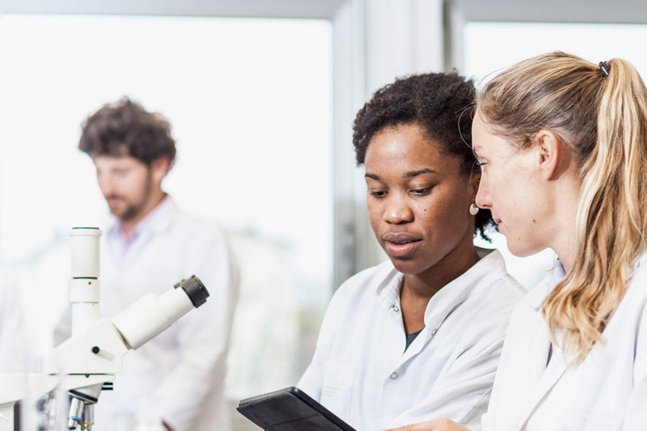 Graduate Medical Program - Jersey Shore University Medical