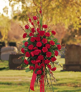 carnation tribute spray